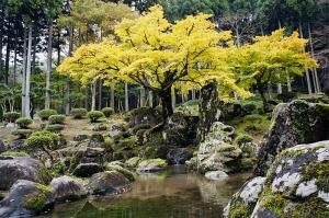 Asakura Family Gardens