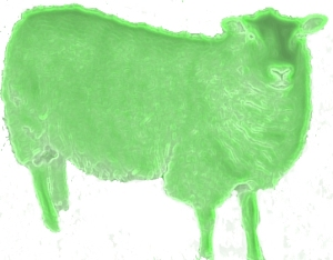 Green Sheep